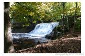2012 秋季剪輯V - Wadsworth Falls State Park:P1020385.JPG
