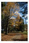 2012 秋季剪輯II - Topsmead State Forest:DSC_6905.jpg