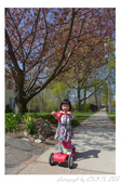2013 Spring II - Jackie's Segway:P1000774.JPG