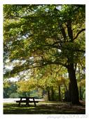 2012 秋季剪輯V - Wadsworth Falls State Park:P1020431.JPG