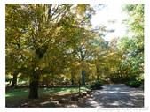 2012 秋季剪輯III - Brook Glen Park & Town of Litchfi:P1020511.JPG