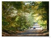 2012 秋季剪輯III - Brook Glen Park & Town of Litchfi:P1020512.JPG