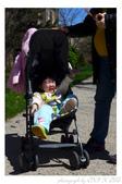 2013 Cherry Blossom(Wooster Square Park):P1000483.JPG