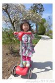 2013 Spring II - Jackie's Segway:P1000782.JPG