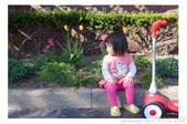 2013 Spring III - Jackie's Segway II:P1000924.JPG