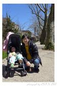 2013 Cherry Blossom(Wooster Square Park):P1000484.JPG