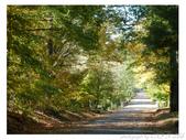 2012 秋季剪輯III - Brook Glen Park & Town of Litchfi:P1020514.JPG