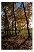 2012 秋季剪輯II - Topsmead State Forest:DSC_6908.jpg