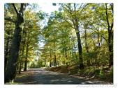 2012 秋季剪輯III - Brook Glen Park & Town of Litchfi:P1020515.JPG