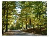 2012 秋季剪輯III - Brook Glen Park & Town of Litchfi:P1020516.JPG