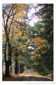 2012 秋季剪輯II - Topsmead State Forest:DSC_6887.jpg