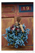2012 秋季剪輯IV - Halloween Decoration in Essex:P1060356_M.jpg