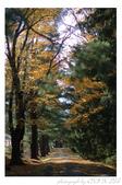 2012 秋季剪輯II - Topsmead State Forest:DSC_6888.jpg