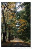 2012 秋季剪輯II - Topsmead State Forest:DSC_6890.jpg