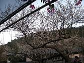980102梅林親水岸:IMG_0141.JPG