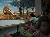 980801清境農場:台中自然科學博物館