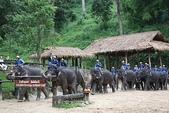 東南亞+南亞+中東:20101217大象學校 (139).jpg