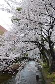 日本春天:2012年4月11日高瀨川 (14)_調整大