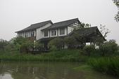 東南亞+南亞+中東:20110422西溪國家濕地公園 (17).jp