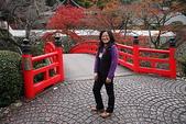 日本楓紅:20101122箕面公園 156_調整大小.jp