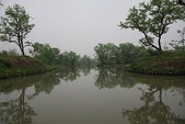 東南亞+南亞+中東:20110422西溪國家濕地公園 (31).jp