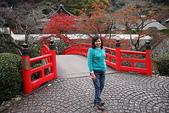 日本楓紅:20101122箕面公園 157_調整大小.jp