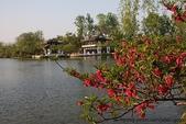 東南亞+南亞+中東:20110419揚州瘦西湖 (95).jpg