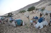 未分類相簿:2012年10月14日騎駱駝.JPG