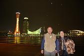 日本楓紅:20101121神戶夜景 (79)_調整大小.j