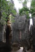 東南亞+南亞+中東:20110520昆明石林 (86).jpg