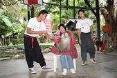 東南亞+南亞+中東:20101217猴子學校 (7).jpg