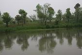 東南亞+南亞+中東:20110422西溪國家濕地公園 (36).jp