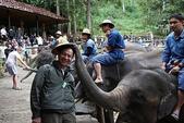 東南亞+南亞+中東:20101217大象學校 (254).jpg