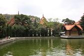 東南亞+南亞+中東:20110521七彩雲南 (2).jpg
