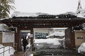 日本冬天:20110114小千谷錦鯉 (111)_調整大