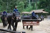 東南亞+南亞+中東:20101217大象學校 (144).jpg