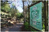 綠光森林:IMG_4282.JPG