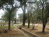 嘉義市東區:phpclLXcD