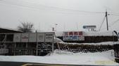 北海道小欂-20180302:三角市場-1.jpg