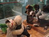 濟洲島之旅:泰迪熊博物館7.JPG