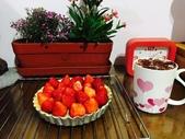 龍潭食坪+野人咖啡+手作點心:手作草莓派-20170312.jpg
