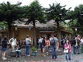 0425苗栗桐花季、天空之城下午茶:人越來越多了~