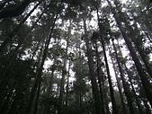 馬崙山:DSC02406.JPG