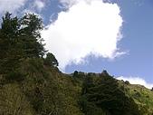 玉山塔塔加:玉山塔塔加 049