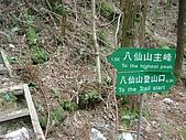 八仙山...櫻花宴:八仙山 103.j