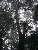 馬崙山:DSC02471.JPG