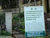 水社大山:DSC00090.JPG