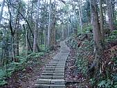 水社大山:DSC00092.JPG