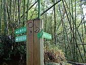 水社大山:DSC00097.JPG