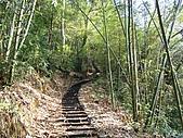 水社大山:DSC00098.JPG